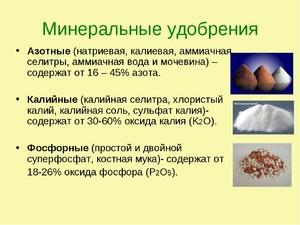 Упаковка азотное удобрение