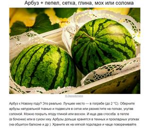 Сроки хранения арбуза
