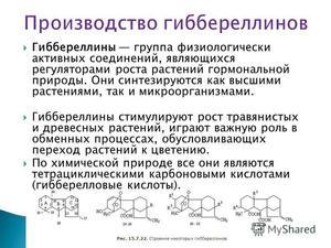 Правила использования гиббереллина