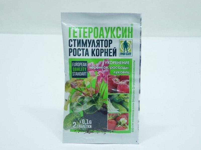 Гетероауксин полив комнатных растений