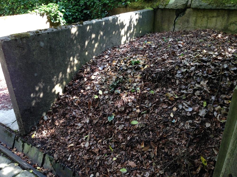 Картинки по запросу Что делать дачнику с опавшими листьями? компост